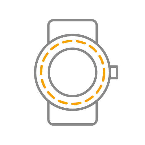 software_wearableIcon